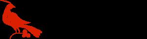 Americana Insights Logo